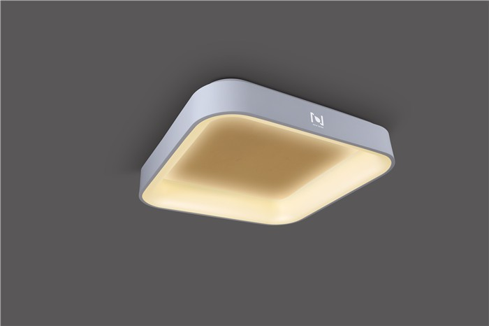 DECORATIVE SQUARE LED LIGHT WITH MOUNTED WAY LL020215M-15W