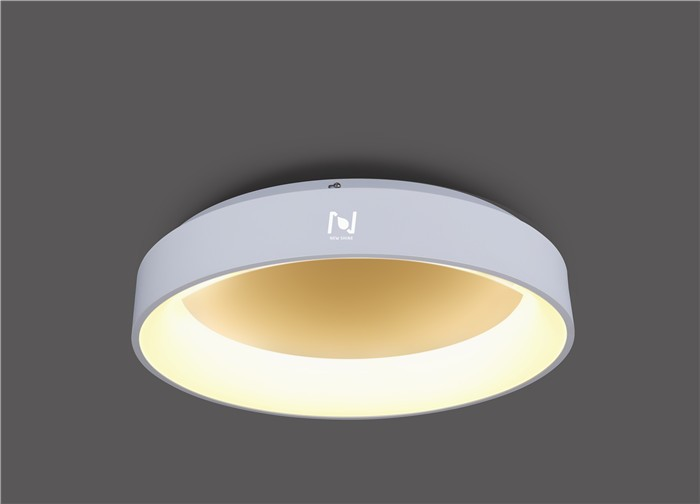 MOUNTED ROUND LED DECORATIVE LIGHT LL020125M-25W