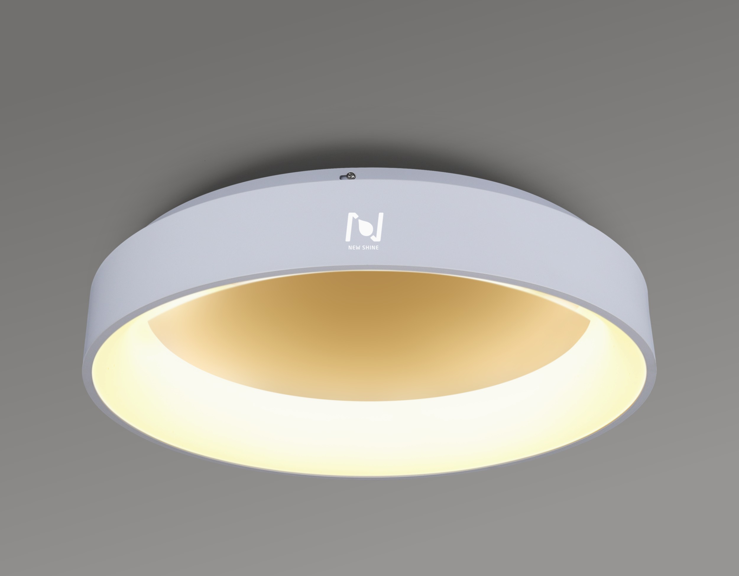 GOOD QUALITY ROUND LED DECORATIVE LIGHTING WITH MOUNTED WAY LL0201M-50W