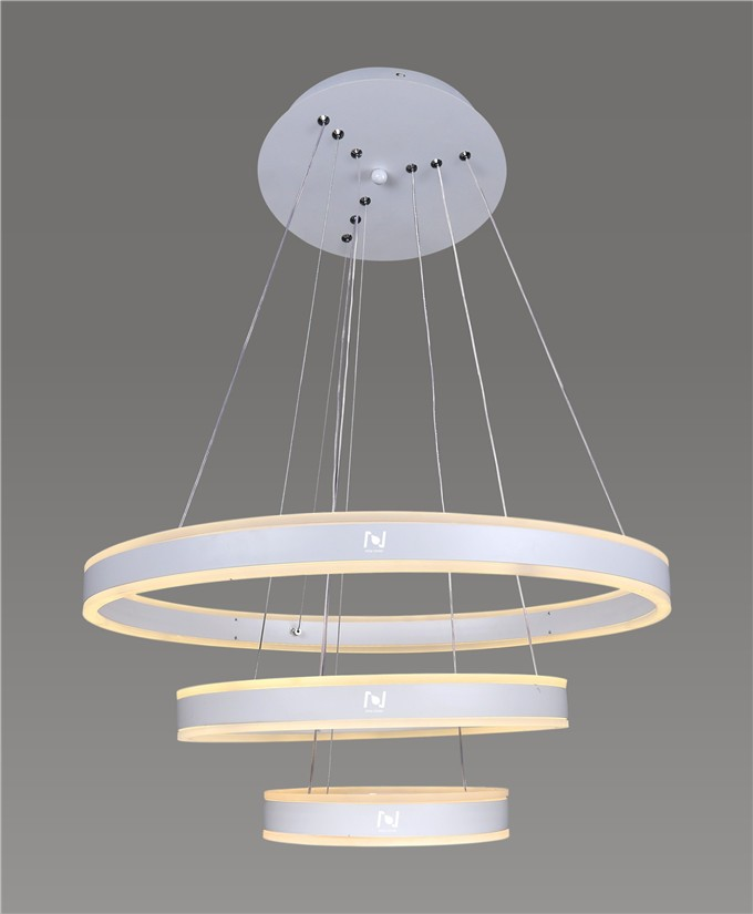 Decorative ring pendant lighting architectural lighting solutions LL0204UDS-100W