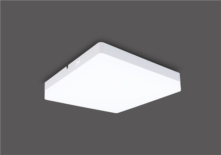 IP54 Square surface mounted led ceiling light LL018315M-15W